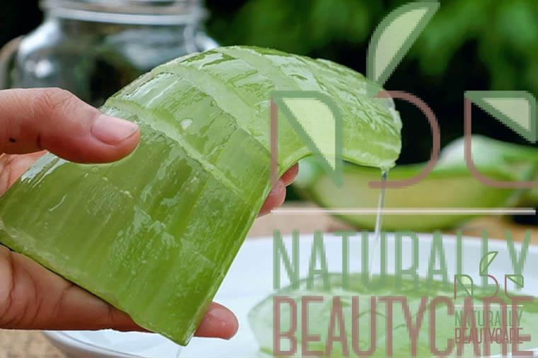 natural-sun-screen-for-hair-with-jojoba-oil-coconut-oil-and-aloe-vera