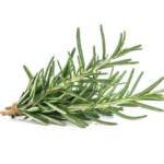 rosemary-natural-hair-mask